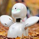 タラルセン由紀がALSの夫アーレさんを支える。ロボット「オリヒメ」が繋ぐ家族の絆