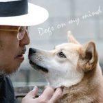 ゆきのすけは保護犬からセラピードッグに。大木トオルの救いで被災犬は野犬から人々の癒やしの存在に変わった