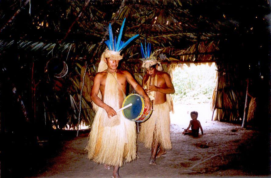 アワフン族とはどんな先住民族?アマゾンのコス村の戦闘民族をWiki風まとめ