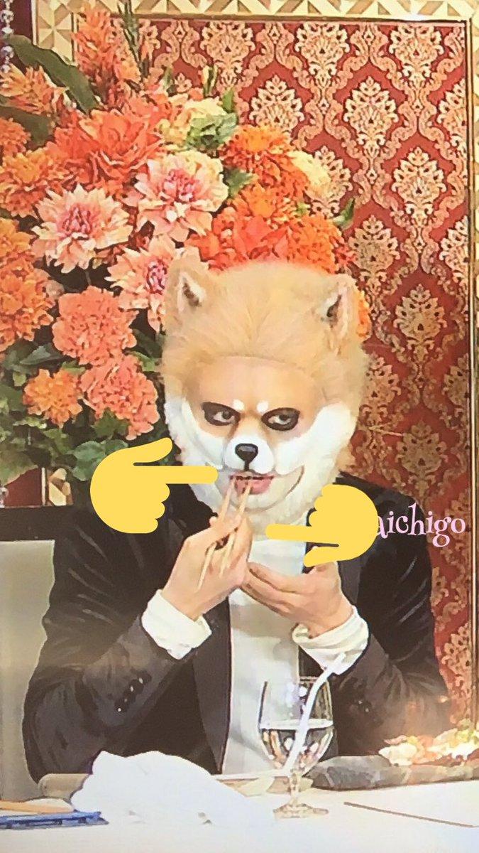 ぐるナイ・ゴチ19新メンバー(2018)誰か予想!決定結果は?中島健人・橋本環奈?生田絵梨花?